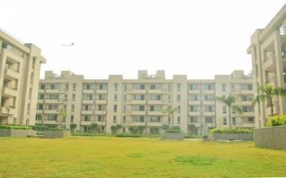 1448 sqft, 2 bhk Apartment in Alpha Meerut One Pavli Khas, Meerut at Rs. 43.0000 Lacs