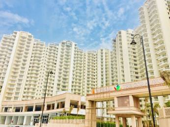 1425 sqft, 2 bhk Apartment in SS The Coralwood Sector 84, Gurgaon at Rs. 56.2875 Lacs