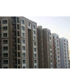1173 sqft, 3 bhk Apartment in Siddha Aangan Bagru, Jaipur at Rs. 29.0000 Lacs