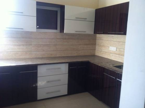 1400 sqft, 3 bhk IndependentHouse in Builder Project Brs nagar, Ludhiana at Rs. 17000