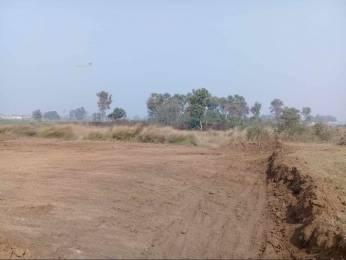 1361 sqft, Plot in Builder Project Asopur Road, Patna at Rs. 31.0000 Lacs