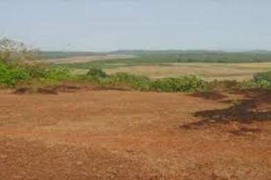 2001 sqft, Plot in Builder nature view Dapoli, Ratnagiri at Rs. 10.0000 Lacs