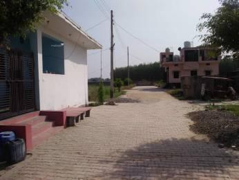 900 sqft, Plot in Builder bkr ecco city SECTOR 29, Faridabad at Rs. 5.0000 Lacs