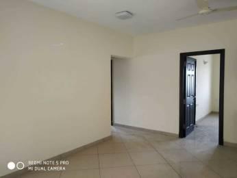 1753 sqft, 3 bhk Apartment in Sobha Amethyst Kannamangala, Bangalore at Rs. 32000