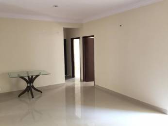 1065 sqft, 2 bhk Apartment in Builder Project Sector 1 Noida Extension, Greater Noida at Rs. 10500