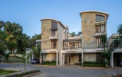 3290 sqft, 4 bhk Villa in Krishna Northwoods Jakkur, Bangalore at Rs. 2.2500 Cr