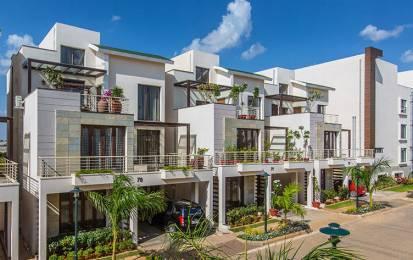 3325 sqft, 4 bhk Villa in Krishna Northwoods Jakkur, Bangalore at Rs. 2.2500 Cr