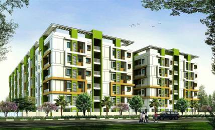 1140 sqft, 2 bhk Apartment in Novus Infra Pvt Ltd Florence Village Gajuwaka, Visakhapatnam at Rs. 34.5000 Lacs