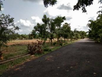 3276 sqft, Plot in Builder nandanavanam 3 Padmanaabham Maddi Village Road, Visakhapatnam at Rs. 25.4800 Lacs