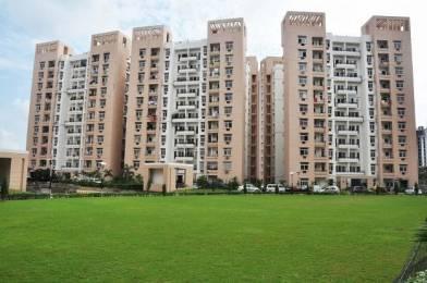1275 sqft, 2 bhk Apartment in Rohtas Plumeria Gomti Nagar, Lucknow at Rs. 63.0000 Lacs