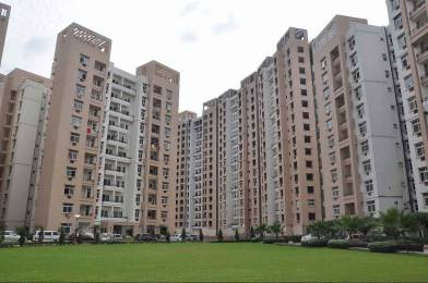 1667 sqft, 3 bhk Apartment in Rohtas Plumeria Gomti Nagar, Lucknow at Rs. 90.0000 Lacs