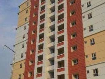 1205 sqft, 2 bhk Apartment in Reputed Greenwood Apartment Gomti Nagar, Lucknow at Rs. 65.0000 Lacs