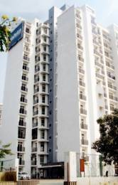 1575 sqft, 3 bhk Apartment in Ansal Celebrity Greens Sushant Golf City, Lucknow at Rs. 78.0000 Lacs