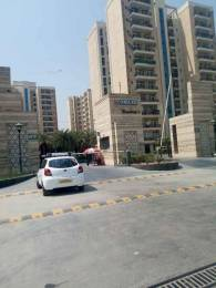 1250 sqft, 2 bhk Apartment in Builder Project Gomti Nagar, Lucknow at Rs. 14000