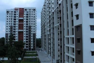 1147 sqft, 2 bhk Apartment in Purti Flowers Metiabruz, Kolkata at Rs. 11000