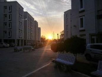 1000 sqft, 3 bhk Apartment in Builder Viram appartment Padra Road, Vadodara at Rs. 20.0000 Lacs