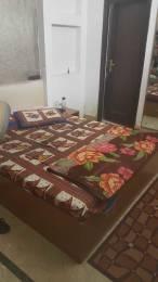 1250 sqft, 1 bhk Apartment in Builder Project Bani Park, Jaipur at Rs. 12000