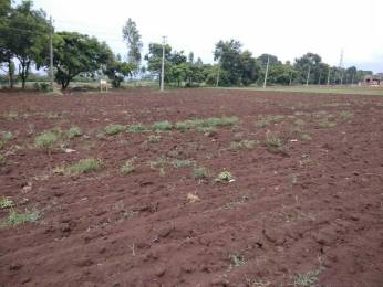 8000 sqft, Plot in Builder Project Kallehol, Belagavi at Rs. 50.0000 Lacs