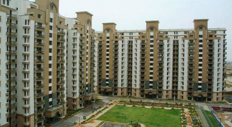 2061 sqft, 3 bhk Apartment in Orchid Petals Sector 49, Gurgaon at Rs. 1.6000 Cr
