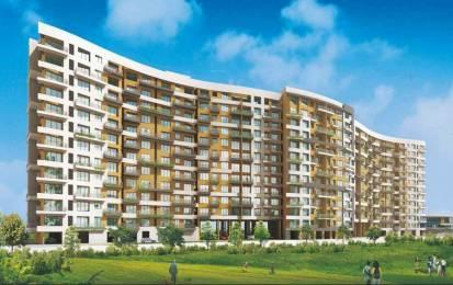 1251 sqft, 2 bhk Apartment in Kalpataru Harmony Wakad, Pune at Rs. 82.0000 Lacs