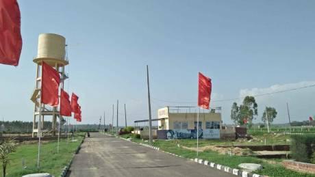 1350 sqft, Plot in Leafstone Apartments Builders Derabassi Dera Bassi, Chandigarh at Rs. 12.8400 Lacs
