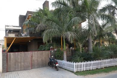 2500 sqft, 2 bhk BuilderFloor in Builder sector 23 gurgaon Sector 23 Gurgaon, Gurgaon at Rs. 11500