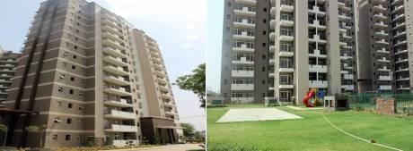 1325 sqft, 2 bhk Apartment in Corona Gracieux Sector 76, Gurgaon at Rs. 75.0000 Lacs