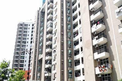 1095 sqft, 2 bhk Apartment in Saya Gold Avenue Vaibhav Khand, Ghaziabad at Rs. 64.9000 Lacs