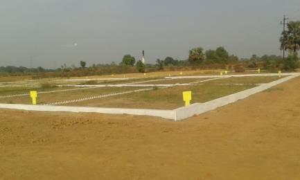 1000 sqft, Plot in Builder Tashi Kopa Khurd Naubatpur Road, Patna at Rs. 6.5000 Lacs