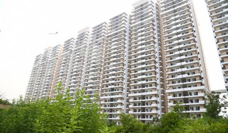 1530 sqft, 3 bhk Apartment in Ace City Sector 1 Noida Extension, Greater Noida at Rs. 58.9000 Lacs