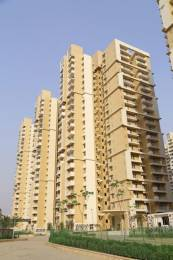 1110 sqft, 2 bhk Apartment in Mahagun My Woods Sector 16C Noida Extension, Greater Noida at Rs. 40.9900 Lacs
