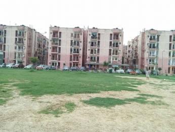 516 sqft, 1 bhk Apartment in Builder Project Sarita Vihar, Delhi at Rs. 52.0000 Lacs