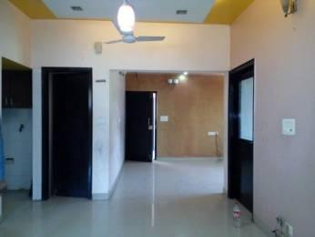 1450 sqft, 3 bhk Apartment in Builder Pocket C RWA Sarita Vihar Sarita Vihar, Delhi at Rs. 1.7500 Cr