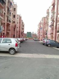 520 sqft, 1 bhk Apartment in Builder Dda lig houses Molarband School Road, Delhi at Rs. 10250