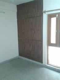 520 sqft, 1 bhk Apartment in Builder Dda lig houses molarbandh Sarita Vihar, Delhi at Rs. 51.0000 Lacs