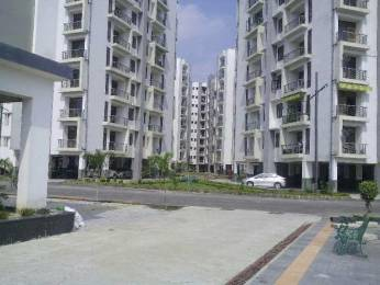 1625 sqft, 3 bhk Apartment in Builder Project Chinhat, Lucknow at Rs. 15000