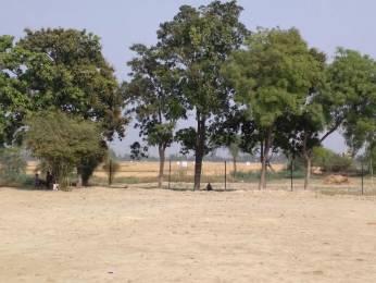 5000 sqft, Plot in Builder Arbandoor plot Rai Bareilly road, Lucknow at Rs. 10.0000 Lacs