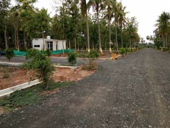 1485 sqft, Plot in Builder mr gardens Vempadu, Eluru at Rs. 8.2500 Lacs