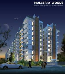 3150 sqft, 4 bhk Apartment in Saran Mulberry Woods Sarjapur Road Wipro To Railway Crossing, Bangalore at Rs. 50000