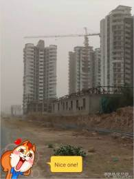 2045 sqft, Plot in Builder Authority Plots kisaan Quota Saini, Greater Noida at Rs. 39.9000 Lacs