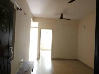 600 sqft, 1 bhk Apartment in Builder amt Marathahalli, Bangalore at Rs. 19750
