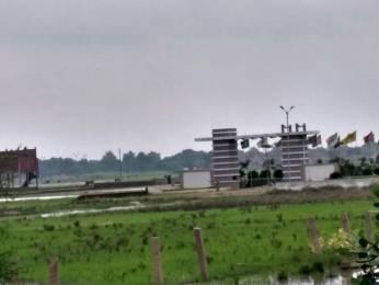 1000 sqft, Plot in Builder Panchjany Royal city NH2, Mathura at Rs. 7.5200 Lacs