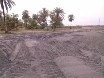 1800 sqft, Plot in Sampark Baruipur Bloomfield Baruipur, Kolkata at Rs. 8.7500 Lacs