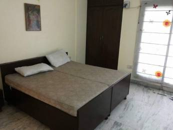 800 sqft, 1 bhk BuilderFloor in Builder Project Sector 52, Noida at Rs. 11000