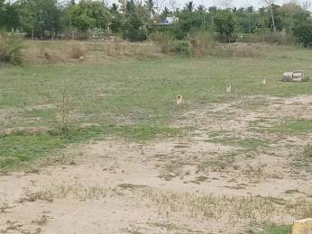 2000 sqft, Plot in Builder DTCP Approved Land At Mosur Thiruvelangadu Arakkonam North, Chennai at Rs. 6.0000 Lacs