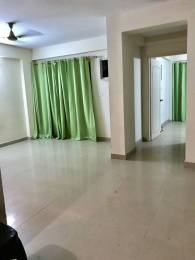 1086 sqft, 2 bhk Apartment in Mahima Panorama Jagatpura, Jaipur at Rs. 12500