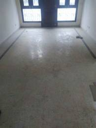 1900 sqft, 3 bhk Apartment in Builder Project Green Park, Delhi at Rs. 60000