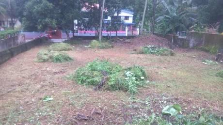 6750 sqft, Plot in Builder Project Ettumanoor, Kottayam at Rs. 2.1800 Cr