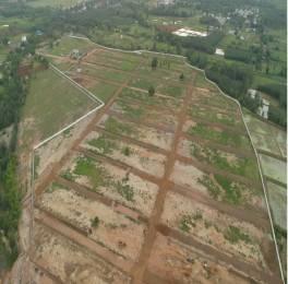 1197 sqft, Plot in Builder Nandanavanam satvika Duvvada, Visakhapatnam at Rs. 13.3000 Lacs