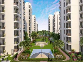 1355 sqft, 3 bhk Apartment in Builder Sushma Joynest Moh Chandigarh Airport Area, Mohali at Rs. 45.9000 Lacs